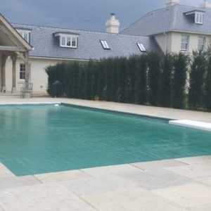 Downton Limestone surround and copings