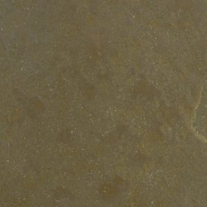 Downton Limestone  - swatch when wet
