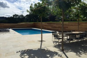 Danebury Sandstone pool surround and coping