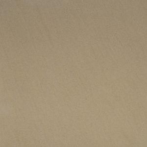 Timsbury Sandstone - swatch 3